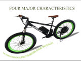 Chinese Best Mountain PAS Electric Fat Bike for Europe Sale