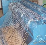 Manufacturer Price and High Quanlity Chain Link Fence /Professional Poly Coated or Galvanized Chain Link Fence for Sale