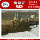 Hot Sale Buliding Construction Road Highway 100g-800g Nonwoven Woven Geotextile