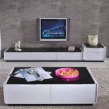 Modern TV Stand in Living Room Furniture (898)