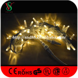Rubber Wire Warmwhite Fairy Lights