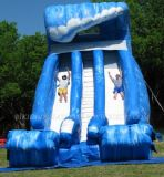 Inflatable Water Slide (B4005)
