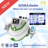 Bd09A Ultrasonic RF Cavitation /650nm Lipolaser Cryolipolysis Slimming Machine