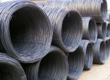 Hot Rolled Mild Carbon Ms Steel Wire Rod