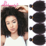 Cambodian Afro Kinky Curly Virgin Hair Extension 10-28 Inch Stock