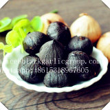 Black Garlic and People