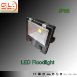 Classical IP65 LED Flood Light with CE RoHS