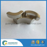 Strong N40 Neodymium Magnet with High Quality for Car Motor