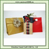 Promotional Paper Gift Packing (S5P012)