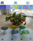 Exquisit Watering Globes, Watering Bulbes, Flower Globes for Home Decoration