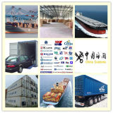 Air Freight/ Consolidate Shipping Consolidate Service From Dalian to Italy Shipping