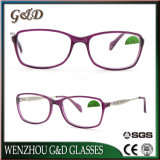 High Quality Popular Acetate Glasses Optical Frame Eyewear Eyeglass