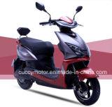 2017 China 500W/1000W LED USB Electric Bike with Lithium (Windy)