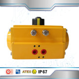 Made in China Factory for Pneumatic Actuator
