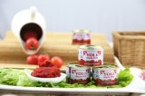 70g Canned Tomato Paste of High Quality