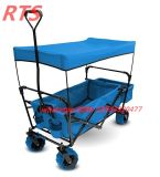 Walking Folding Wagon/Cart Shopping Cart