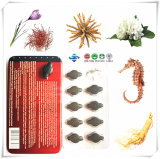 Ginseng and Snow Lotus with Super Herbal Extract Natural Health Care Product for Male Enhancement