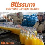 Glass Bottle Juice Processing Line/Plant/System