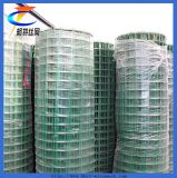 PVC Coated Welded Wire Mesh for Making Crab Trap