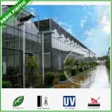 Heat Resistant Polycarbonate PC Sheets UV Protection for Agricultural Greenhouses