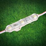 High Brightness 5730 Injection Module LED Lighting with Best Price