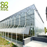 Multi Span Agricultural Double Layer Hollow Glass Greenhouse