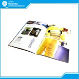 Color Staple Brochure Booklet Printing