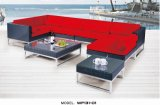 Modern Outdoor Furniture/ Aluminum Frame Rattan Sofa (WF131-02)