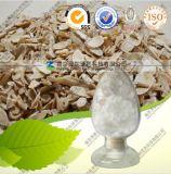 Natural Cycloastragenol 98% Astragalus Membranaceus Extract