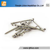 Polished Duplex Head Common Wire Nails
