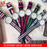 Yxl-500 Arabic Numbers Watches New Design Montre Leather Straps Watch