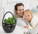 Creative Gift Aroma Diffuser with Plant-Extracted Crystal, Negative Ions