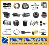 Over 6000 Items Auto Spare Part for Renault