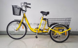 Three Wheel Electric Bicycle with Cargo for Farmer