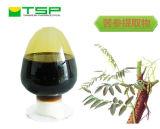 GMP Factory Supply Sophora Extract Liquid