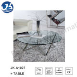 Glass /Vitreous Oval Dining Table with Stainless Legs (Jk-A1027)