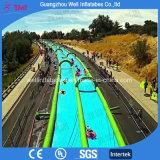 Long Water Slide Tubes Inflatable City Slide
