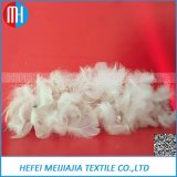 Pillow Duvet Filling Material Washed White Goose Feather for Sale