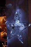 Acrylic Beads Star Anise (IL0517-1)