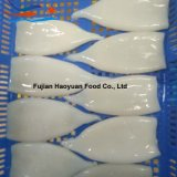 New Catching Frozen Seafood Squid
