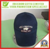 Logo Embriodered Baseball Cap (FREEDOM-TI007)