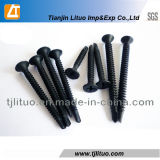 Drill Poinr Drywall Screw Self Drilling Drywall Screw