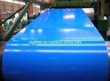 Competitive Price Prepainted Galvanized Steel Coil