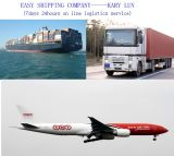 Consolidate Your Reliable & Professional Shipping Agent in China