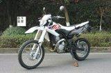 150cc 200cc 250cc Fox Model Dirt Bike 2015 Newly Design