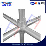 Competitive Price Cuplock Scaffolding for Construction