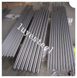 Stainless Steel Forged Round Rod/Bar