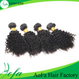 Full Cuticle 100% Mongolian Virgin Human Hair Supply Afro Curly
