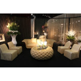 Living Room Furniture Set/Chinese Furniture/Livingroom Sofa Set (B1)