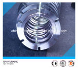 Non-Standard Special Forged F321 Stainless Steel Flanges
